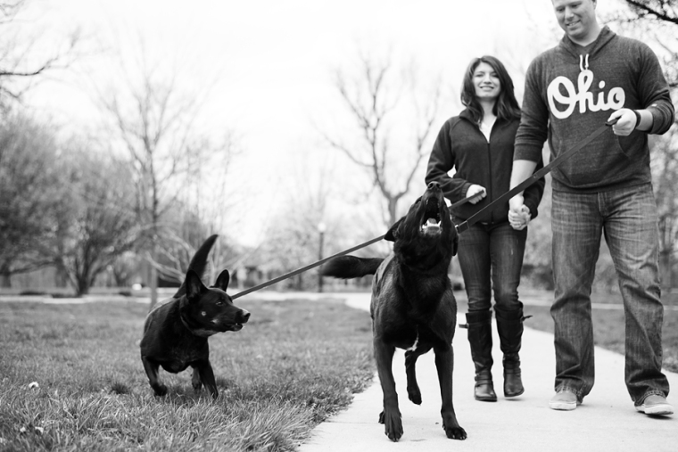 sarah gee photography columbus ohio engagement photographer - v & d-0200
