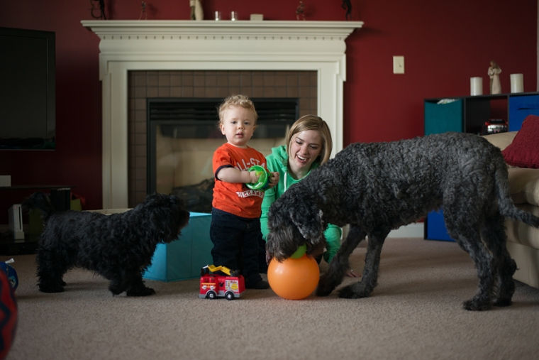 boy and his dogs at home lifestyle photography columbus ohio